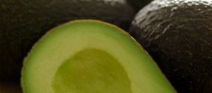 In the Spotlight: Avocados