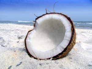 Beautiful Coconut