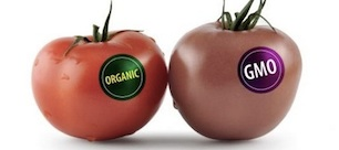 GMO vs. Organic: Here's How to Tell What You're Buying?
